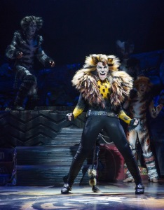 cats-tyler-hanes-as-rum-tum-tugger-by-matthew-murphy_edited