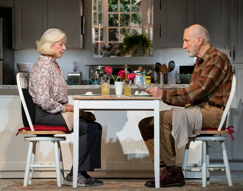 GRAND HORIZONSBY BESS WOHL DIRECTED BY LEIGH SILVERMAN